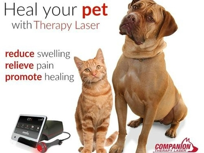 New Therapy Laser