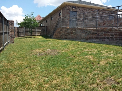 Outdoor Dog Yard