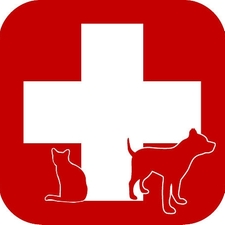 Pet Emergency, Emergency vet care,after hours vet