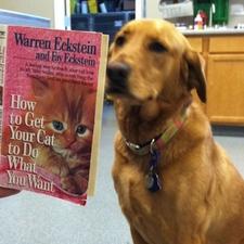 veterinary resources