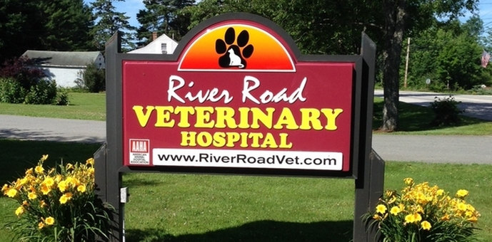 river road veterinary sign