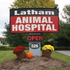 Latham Animal Hospital Latham, NY veterinary