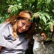 veterinarian, animals, cat