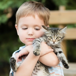 pets kids Catskill Animal Hospital vets prevention