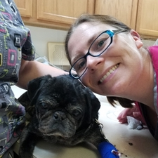 Gina veterinary assistant