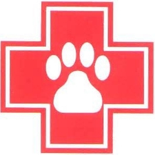 EMERGENCY PET VISIT CONTACT INFORMATION