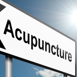 ACUPUNCTURE PETS, DOG PAIN RELIEF