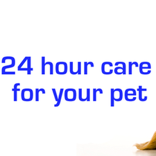 24 hour care, call us, overnight care