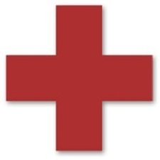 Veterinary Emergency NYC