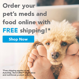 Click here to order pet meds & food online.