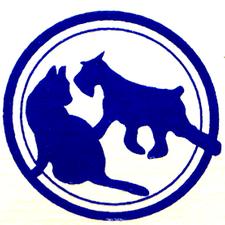 Denbigh Veterinarian Newport News Puppy Kitten