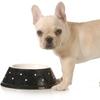 pet nutrition,biggest loser,obesity,pet weight