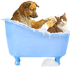 Dog and cat in tub