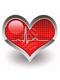 vet cardiologist cardiopulmonary dog heart