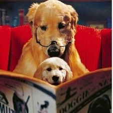 dad reading to puppy