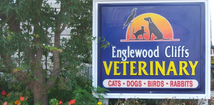 Veterinary hospital sign in front of building