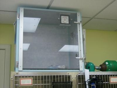 ICU Cage