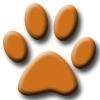 orange paw