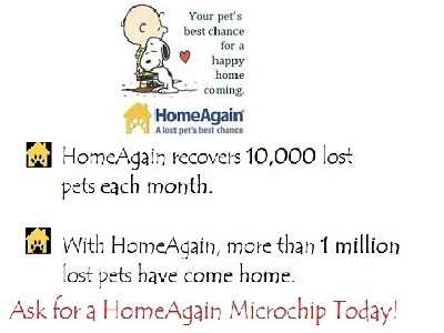 Microchip Your Pet Today!