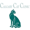 cat clinic,vet clinic,animal hospital,veterinarian