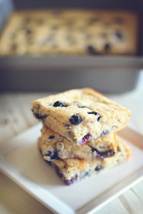 Blueberry Protein Oatmeal Squares