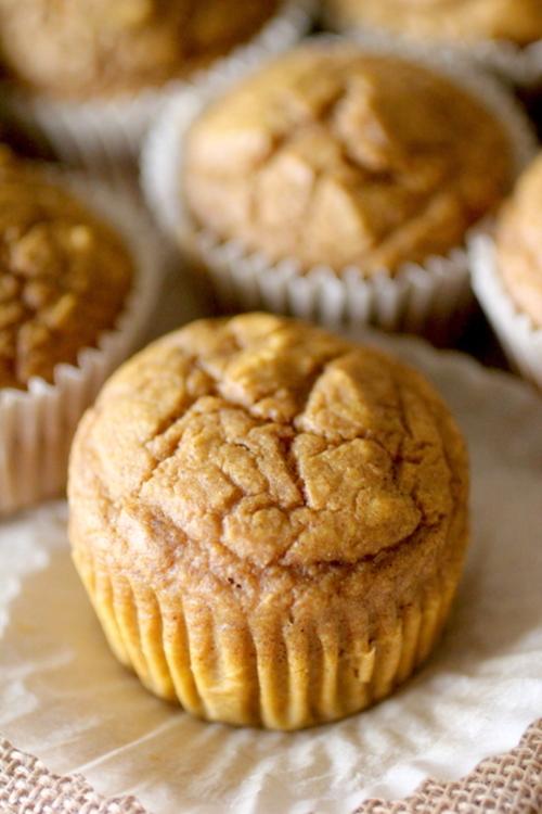 Moist Pumpkin Protein Blender Muffins
