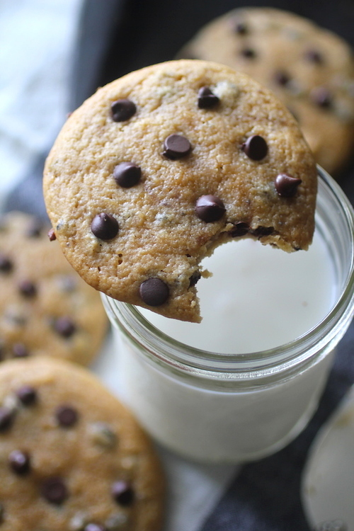 Soft Baked Grain Free Chocolate Chip Cookies
