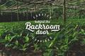 Backroom door z
