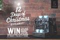 12 days of christmas 1000x667