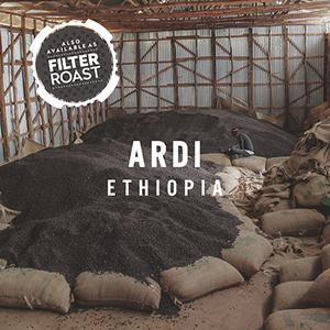 Ardi filter %282%29