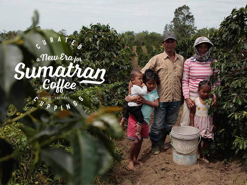 A new era of sumatra coffee 800w