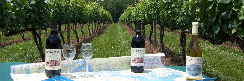2009 05 29 wine bottles hhv group shot