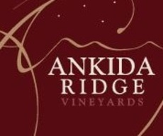 Ankida 4