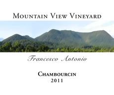 Mtn view vineyard 80597 chambourcin 2011 front %281%29