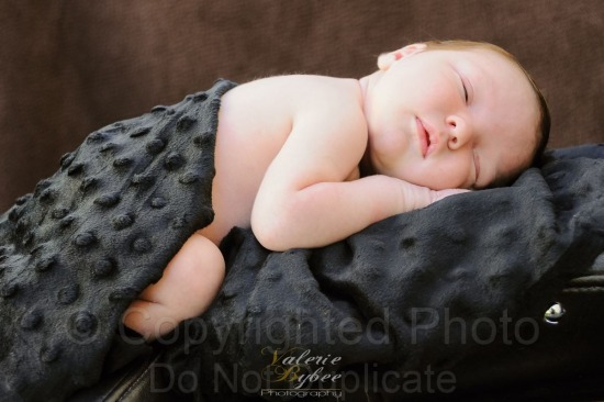 Newborn Session with the Tolman's