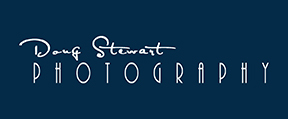 Doug Stewart Photography