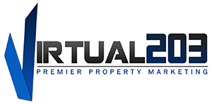 Virtual 203