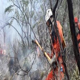 Bombeiros atuam no combate às chamas, que assolam a área desde sábado