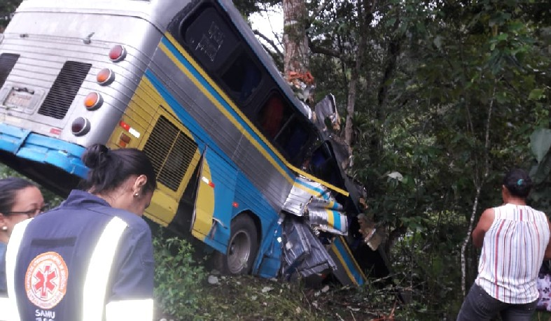 Segundo informações da PRF, motorista teria perdido o controle da direção e bateu em uma árvore após sair da pista.