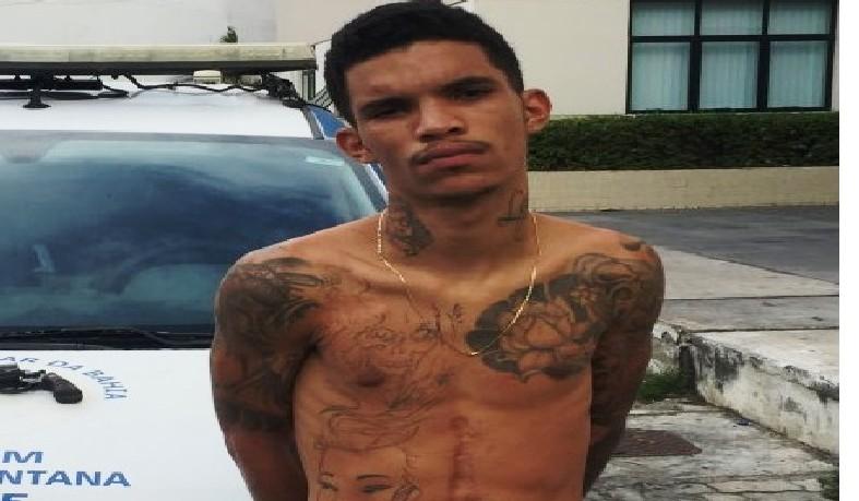 Javali estava fugido de Feira de Santana desde o dia 16 de maio