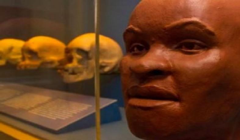 Expectativa é de que o crânio seja quase totalmente reconstituído