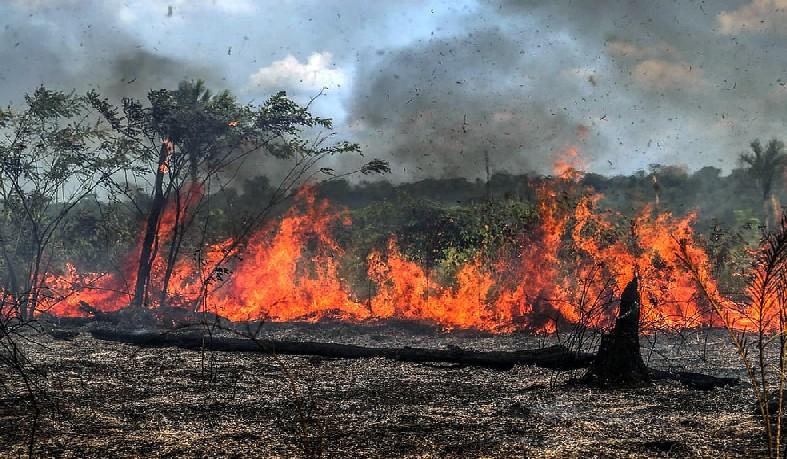 Imagem registrada na terça-feira, dia 27, mostra queimadas na terras do produtor rural José Silva de Souza, em Santo Antônio do Matupi, no sul do Amazonas.