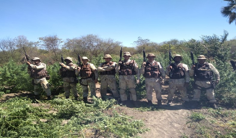 Policiais militares chegaram no local após denúncias