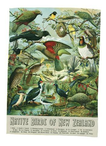 NZ Native Birds Teatowel