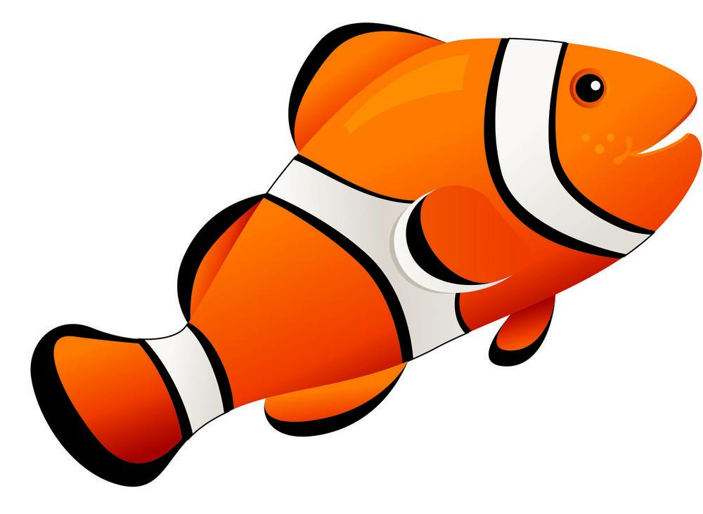 AP 10036 MAG ERASER CLOWN FISH