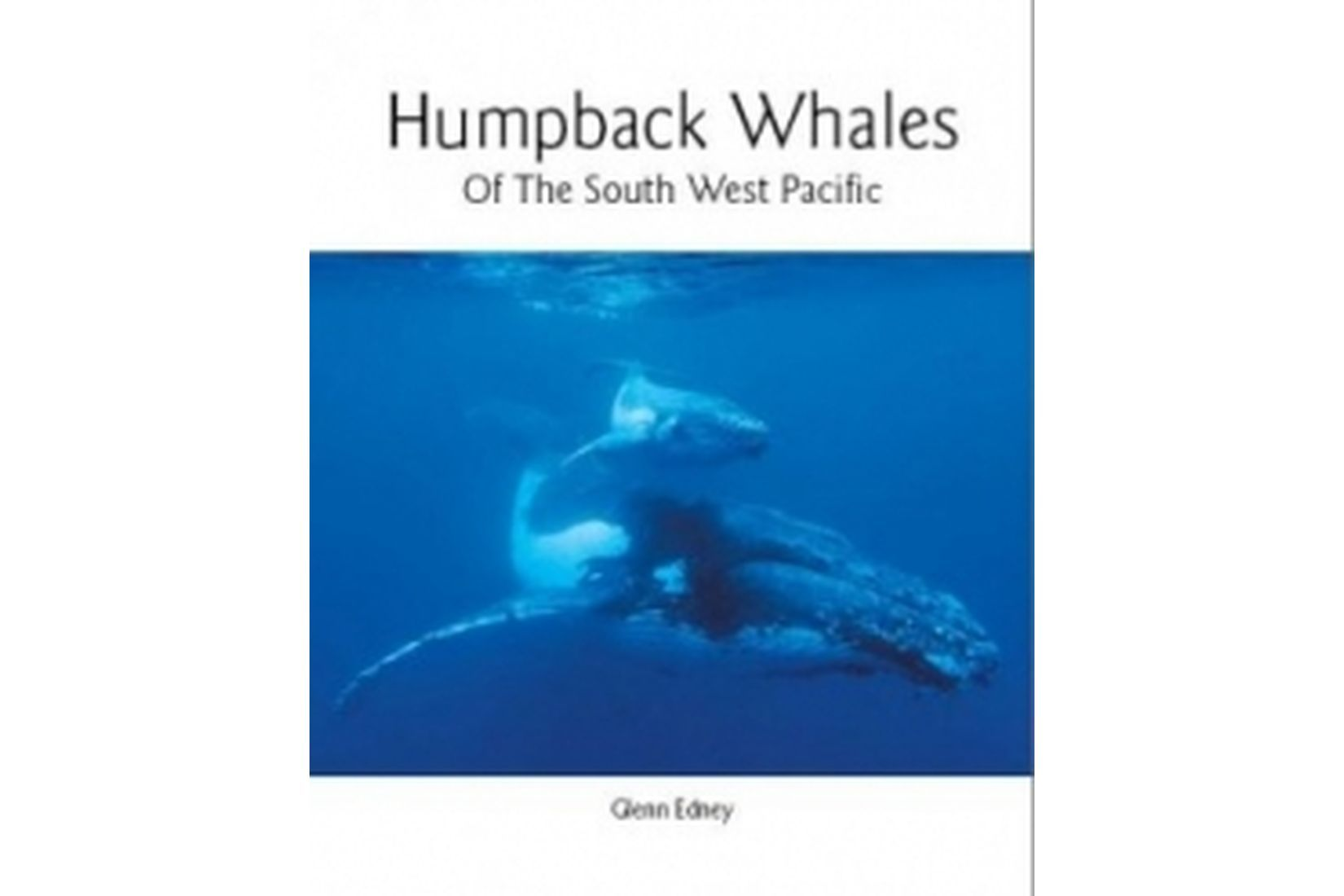 Humpback Whales of the South West Pacific Book
