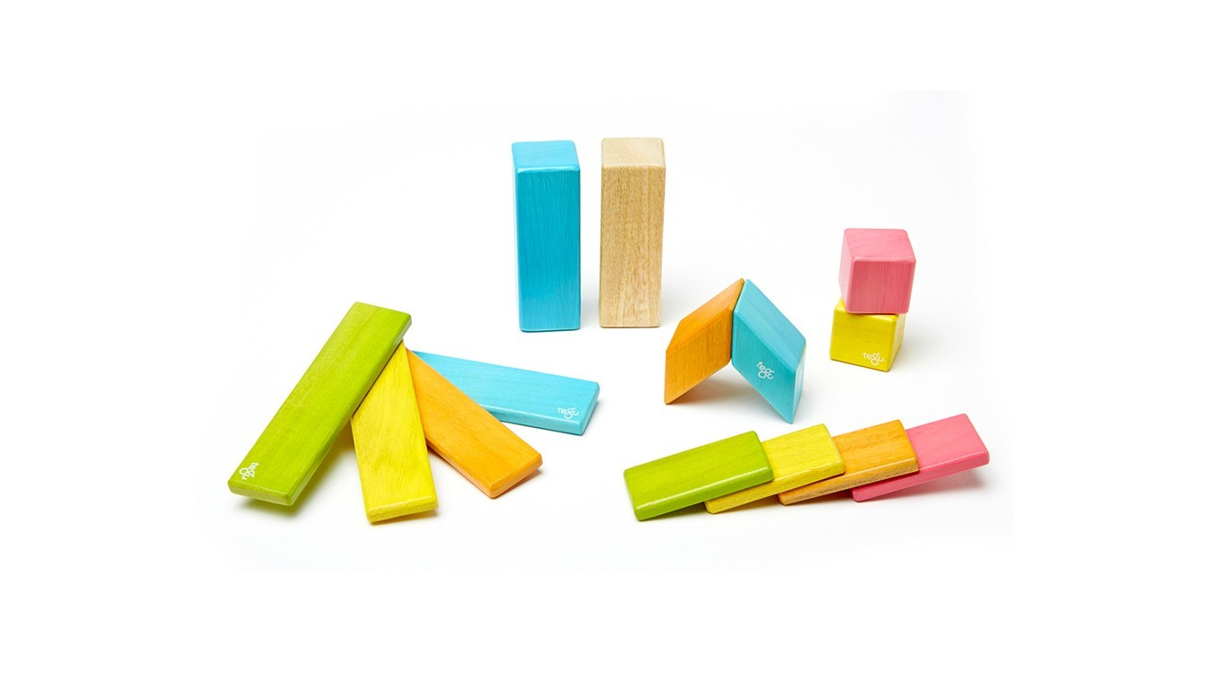 14-Piece Set Tegu