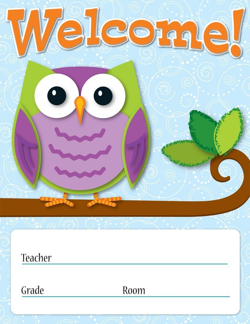 CD 114198 COLORFUL OWLS WELCOME CHART