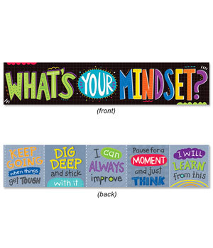 CTP 8151 WHAT'S YOUR MINDSET? DOUBLE SIDED BANNER