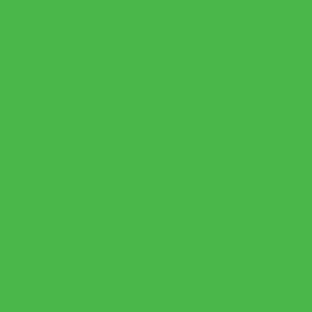 Amsterdam Acrylic 120ml Reflex Green